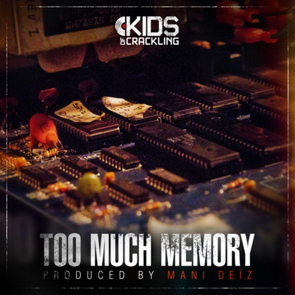 too-much-memory1